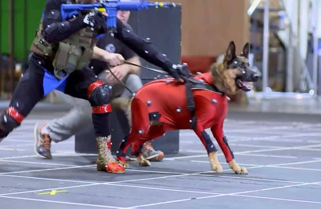 xbox-one-call-of-duty-ghjosts-mocap-dog-1024x666
